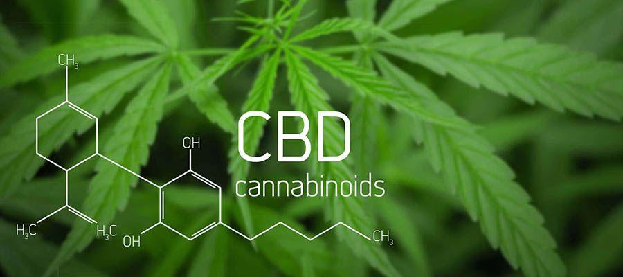 CBD_Cannabidiol