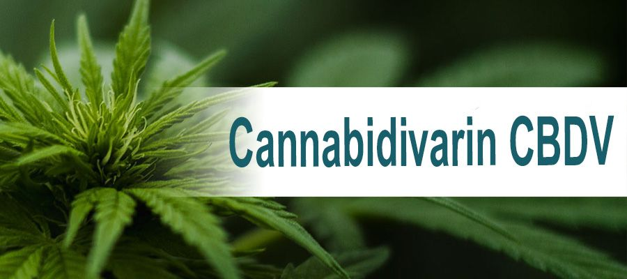 Cannabidivarin-CBDV