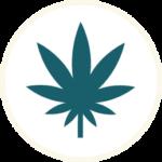 canna_leaf_icon_