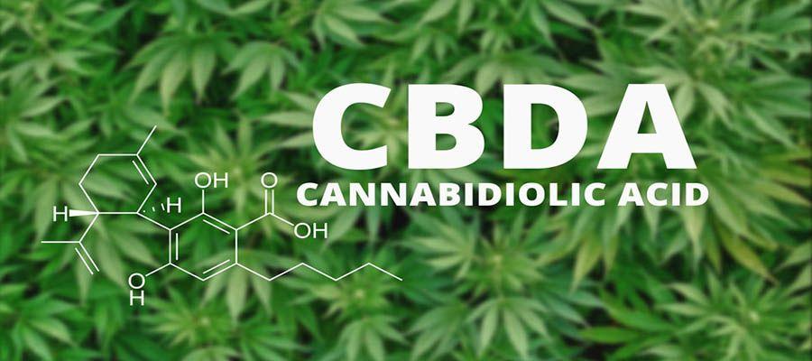 cbda_cannabidiolic_acid